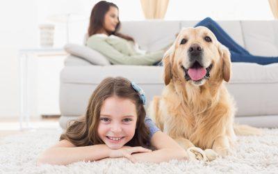 Bij echtscheiding ook kind onder 12 horen