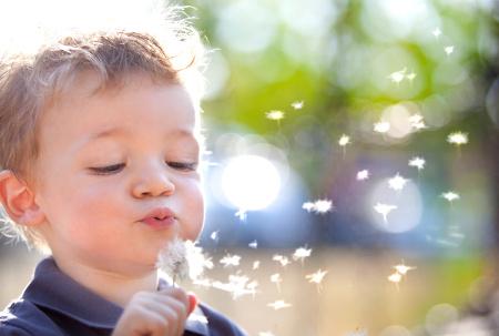 Wat vinden kinderen belangrijk in een scheiding? - Scheidingsplanner Maastricht - Heerlen - Gulpen
